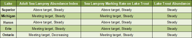 Chart showing sea lamprey abundance, wounds on lake trout and lake trout abundance for each great lake.  In Lake Superior the adult sea lamprey abundance index is above target and holding steady; the sea lamprey marking rate on lake trout is above target and holding steady; and, lake trout abundance is steady.  In Lake Michigan the adult sea lamprey abundance index is meeting target and holding steady; the sea lamprey marking rate on lake trout is above target and decreasing; and, lake trout abundance is steady.  In Lake Huron the adult sea lamprey abundance index is above target and holding steady; the sea lamprey marking rate on lake trout is above target and holding steady; and, lake trout abundance is steady.  In Lake Erie the adult sea lamprey abundance index is above target and holding steady; the sea lamprey marking rate on lake trout is above target and holding steady; and, lake trout abundance is steady.  In Lake Ontario the adult sea lamprey abundance index is meeting target and holding steady; the sea lamprey marking rate on lake trout is meeting target and decreasing; and, lake trout abundance is steady.