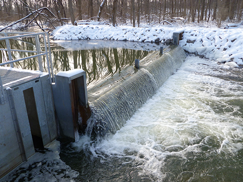 Sea lamprey barrier and fish ladder trap in the winter