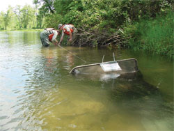 Two U.S. Fish and Wildlife Service sea lamprey control agents installing a fyke net to trap migrating juvenile sea lamprey.